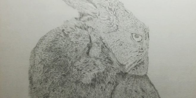 14-04-18 – Hare WIP