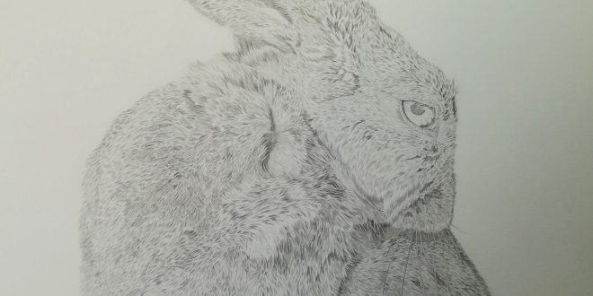 18-04-18 – Hare WIP