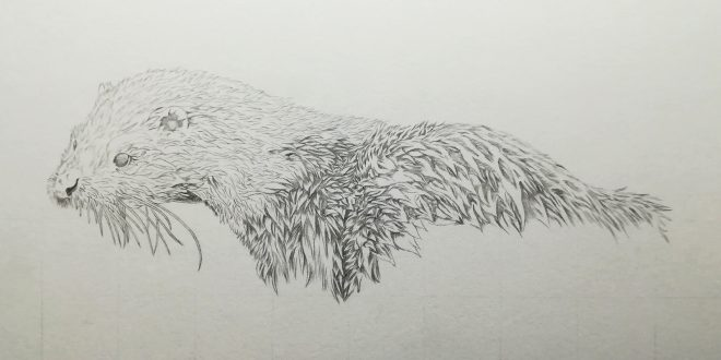 25-08-18 – Otter WIP
