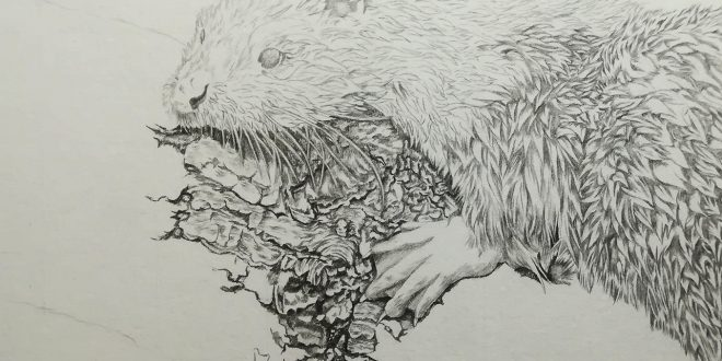 03-09-18 – Otter WIP