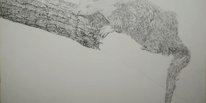 08-09-18 – Otter WIP