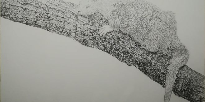 15-09-18 – Otter WIP