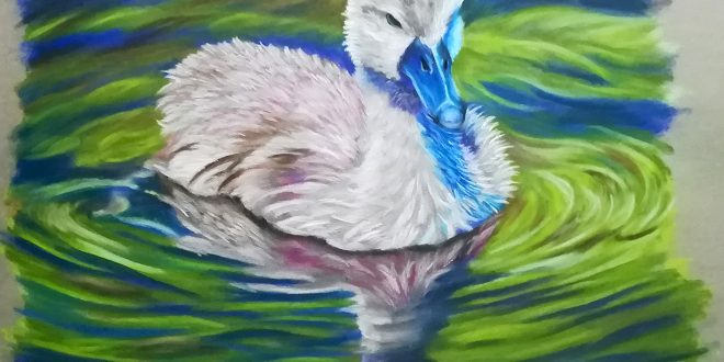 27-10-18 – Cygnet colour sketch.