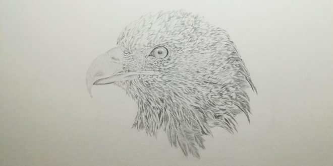 20-04-19 – Golden Eagle WIP