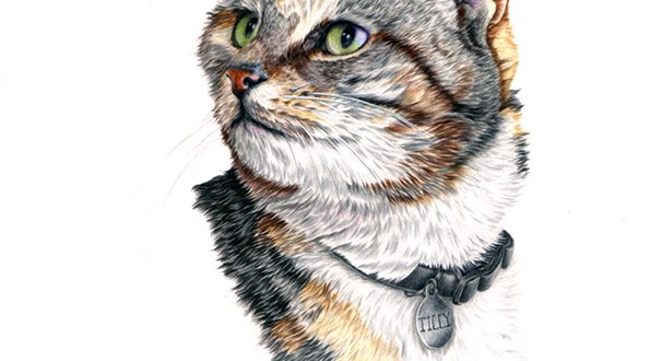"""Tilly"", portrait in coloured pencils on paper, A4."