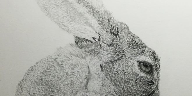 21-04-18 – Hare WIP
