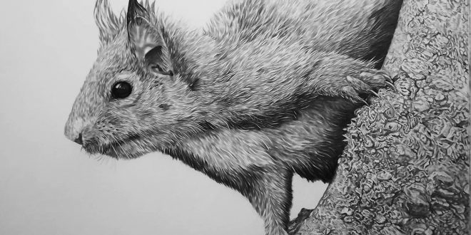 25-07-18 – Red Squirrel WIP