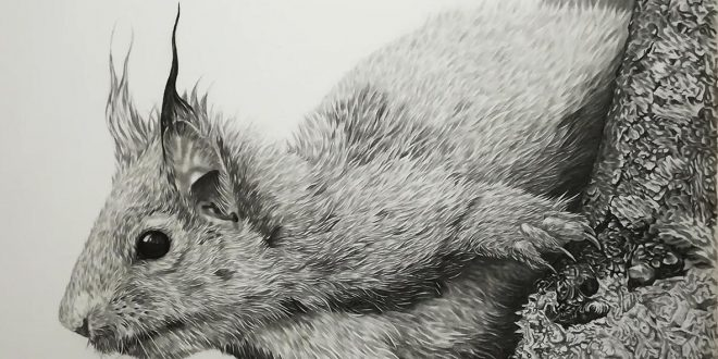 01-08-18 – Red Squirrel WIP