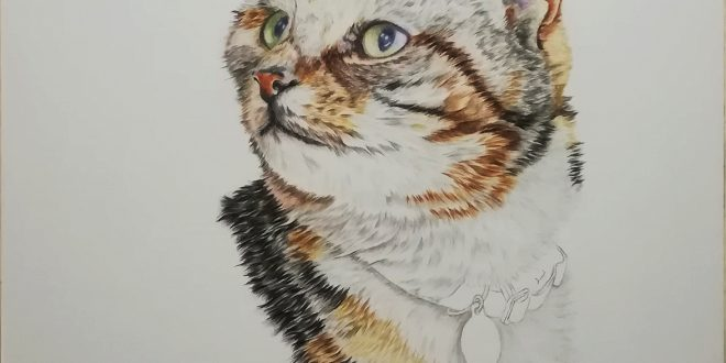 12-11-19 – Tilly WIP